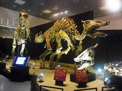20140212国立科学博物館/大恐竜展/サウロロフスとタルボサウルス全身.jpg