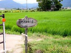 吉野ヶ里公園への道
