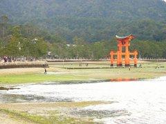 厳島神社・鳥居遠景・干潮時