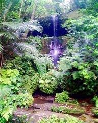 西表島野山道・小さな滝.jpg