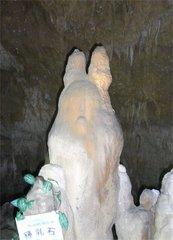 石垣島鍾乳洞トトロ石