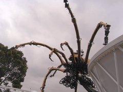 蜘蛛ロボットを見上げる