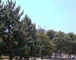 木々の上に見えるガンダム
