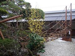 うだつの家・かずら橋.jpg