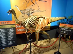 サイパル・恐竜展1.jpg