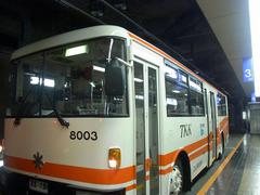 トロリーバス.jpg