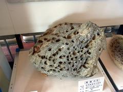 ノシャップ岬・科学館・南極の石.jpg