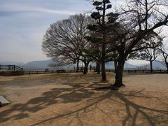 丸亀城・本丸.jpg