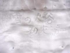 室堂・雪の大谷初来訪.jpg