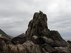 室戸岬・びしゃご岩.jpg