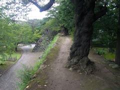 小諸城・天守台へ続く石垣の上.jpg