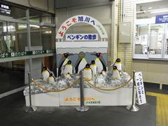 旭川駅のペンギンオブジェ.jpg