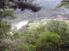 木立の間の千曲川.jpg