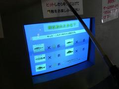 架橋記念館・釣りゲーム.jpg