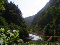 欅平・名剣温泉付近から奥.jpg