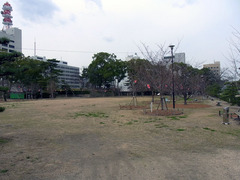 玉藻公園・桜馬場.jpg