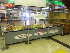 盛岡駅・もりおかの祭り.jpg