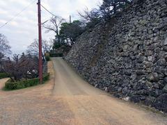 高知城・梅の段から二の丸へ.jpg