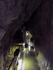 龍河洞・入口付近.jpg
