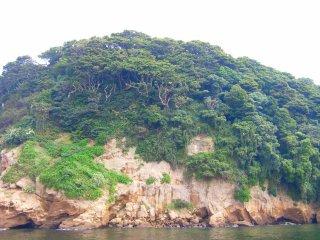 猿島絶壁.jpg
