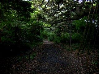 金沢城公園本丸.jpg