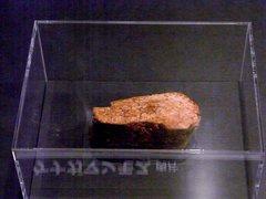 マンモスの肉片.jpg