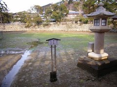 厳島神社・鏡の池・干潮時
