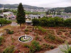 白河小峰城バラ園.jpg