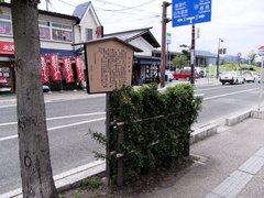 米沢市内うこぎ.jpg