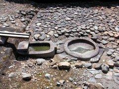 亀形石像物・亀.jpg