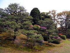 二条城・本丸庭園.jpg