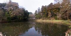 佐倉城・姥が池.jpg