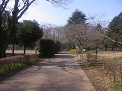 佐倉城/椎木門跡.jpg