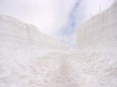 室堂・雪の回廊.jpg