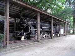 富山城・蒸気機関車.jpg