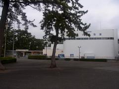 東海大学海洋科学博物館.jpg