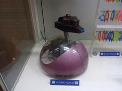 東海大学海洋科学博物館/機械水族館/ミツメムレツクリ.jpg
