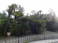 栗林公園・鳳尾塢.jpg