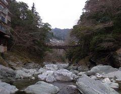 祖谷観光・かずら橋・川原から.jpg