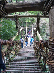 祖谷観光・かずら橋・渡り口から.jpg