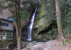 祖谷観光・枇杷の滝.jpg