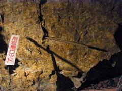 象山地下壕・岩に刺さったままの削岩機ロッド.jpg