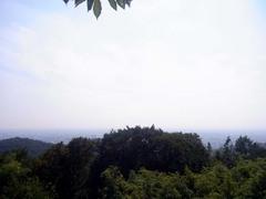金山城・南曲輪・富士山が見えるらしい.jpg