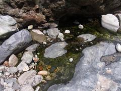鐘釣・河原温泉湯だまり.jpg